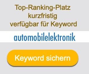 automobilelektronik Anbieter Hersteller