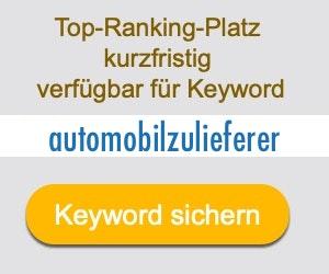 automobilzulieferer Anbieter Hersteller
