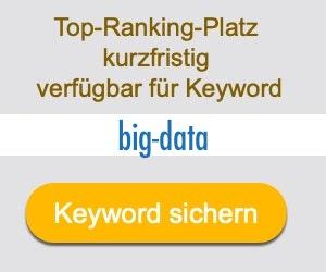 big-data Anbieter Hersteller