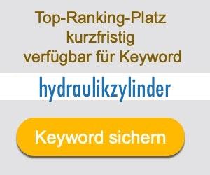 hydraulikzylinder Anbieter Hersteller