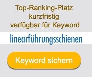 linearführungsschienen Anbieter Hersteller