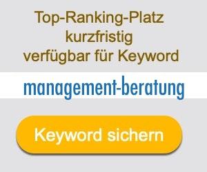 management-beratung Anbieter Hersteller