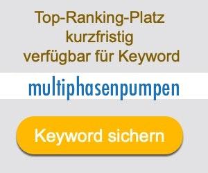 multiphasenpumpen Anbieter Hersteller