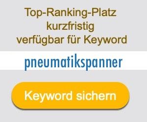 pneumatikspanner Anbieter Hersteller