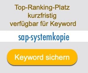 sap-systemkopie Anbieter Hersteller