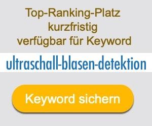 ultraschall-blasen-detektion Anbieter Hersteller